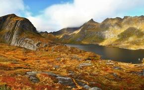 Picture autumn, grass, lake, mountain, Norway, Agvatnet