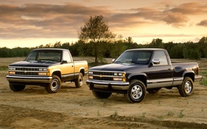 Picture field, the sky, trees, Chevrolet, jeep, Chevrolet, pickup, the front, 1500, C/K, Regular Cab, 1988