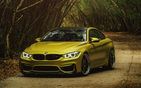 Picture bmw, gold, yellow, f82