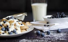 Picture food, blueberries, plate, ice cream, dessert, waffles, powdered sugar