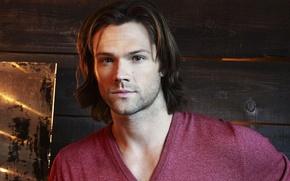 Picture face, portrait, actor, male, Supernatural, Supernatural, Jared Padalecki, Sam Winchester, Over The Padalecki Jared, Sam …