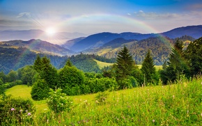 Picture forest, trees, mountains, nature, rainbow, rainbow, trees, nature, mountains, forests