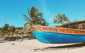 Picture sea, palm trees, Boat