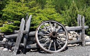 Picture road, forest, trees, the fence, wheel