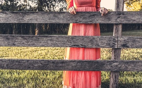 Picture nature, the fence, dress