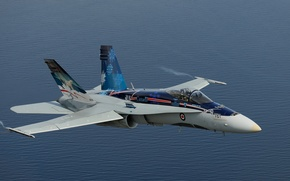 Wallpaper Hornet, CF-18, fighter, multipurpose