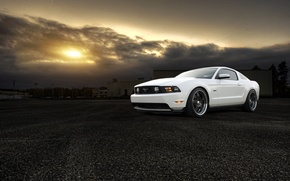 Picture white, the sun, sunset, Mustang, Ford, Mustang, white, muscle car, Ford, muscle car, 5.0, front