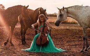 Picture girl, horses, cello