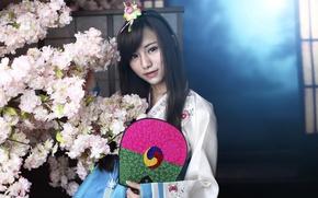 Picture look, face, style, hair, fan, Asian, Korea, Korean