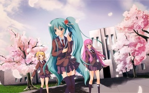 Picture stockings, Sakura, vocaloid, school, school uniform, blue hair, pink hair