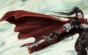Picture cloak, armor, blade, assassin, Girl
