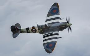 Picture fighter, British, Spitfire, single-engine