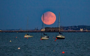 Picture night, Bay, boats, yacht, The moon