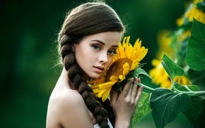 Picture look, girl, face, background, sunflower, light, brown hair, beautiful, shoulders, baby, nature, photographer, blue-eyed, pretty, …