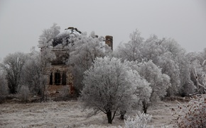Picture trees, Church, destroyed