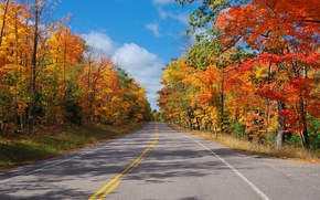 Picture road, autumn, forest, the sky, trees, highway
