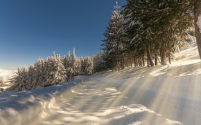 Picture winter, road, snow, landscape, nature, morning