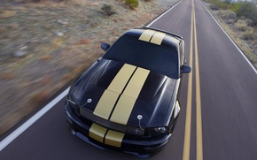 Picture road, strip, ford, shelby gt-500