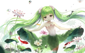 Picture leaves, fish, bubbles, fairy, Lotus, Water, green hair, nymph