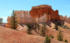 Picture trees, landscape, mountains, rocks, canyon