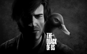 Picture duck, last of us, Pewdiepie