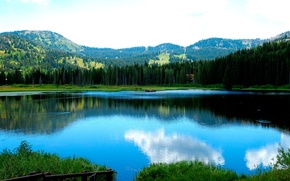 Wallpaper Forest, Lake, Mountains