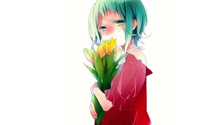 Picture yellow, tears, tulips, white background, blouse, vocaloid, green hair, art, naoto, rubber megpoid