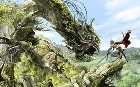 Picture dragon, warrior, battle
