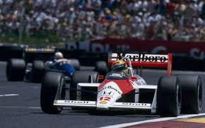Picture Ayrton Senna, GP France, Season 1988, McLaren MP4/4