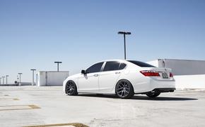 Picture profile, white, Honda, Accord, Honda, chord, Acura, TSX