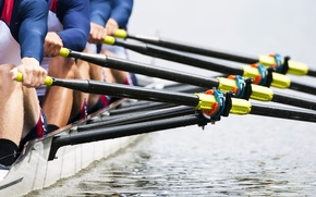 Picture water, power, crew rowing