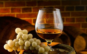 Picture wine, grapes, alcoholic beverage