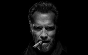 Wallpaper look, cigar, Arnold Schwarzenegger