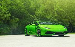 Picture ADV.1, Color, Lamborghini, LP610-4, Green, Supercar, Front, Wheels, Huracan