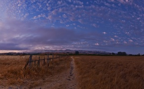 Picture the sky, Field, the evening