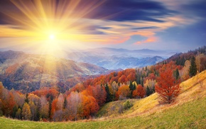 Picture autumn, the sky, the sun, clouds, rays, trees, hills, foliage