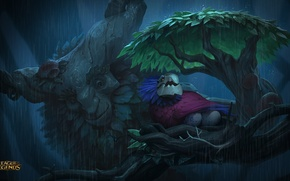 Picture Champion, League of Legends, Ivern