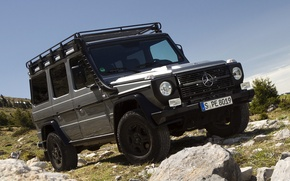 Picture Mercedes-Benz, Germany, jeep, Grey, Wallpaper, Germany, Джи300, g300, pROFESSIONAL, Mercedes.Benz, G