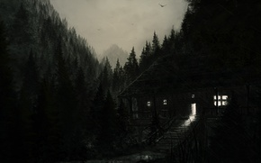 Picture forest, light, house, rain, black