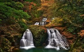 Picture Japan, Nabari, He Shijuhachi-taki, trees, Mie Prefecture, Nabari, waterfalls, Japan, Akame 48 Waterfalls, autumn, forest, ...