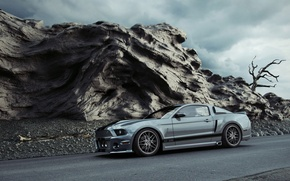 Picture Mustang, supercar, mustang gt 500