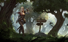 Picture forest, girl, trees, weapons, arrows, sword, art, pointers