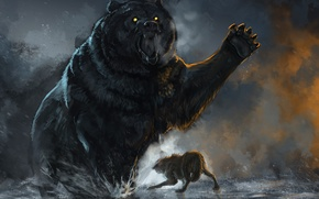 Picture Battle, Bear, Wolf
