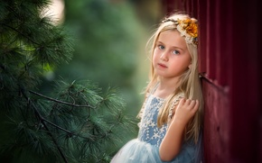 Picture look, branch, dress, girl