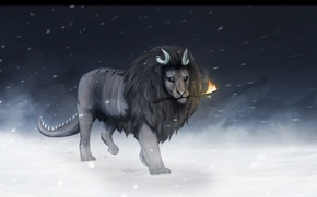 Picture cold, winter, snow, fiction, fire, animal, Leo, mane, tail, horns, stick