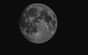 Picture night, the moon, the full moon