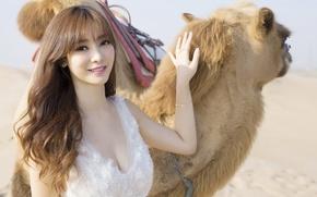 Picture desert, animals, girls