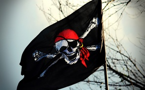 Picture skull, flag, pirate, Jolly Roger
