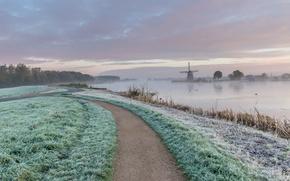 Wallpaper field, autumn, road, fog