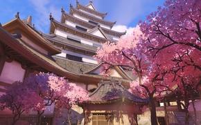 Picture house, Sakura, Overwatch